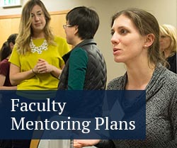 Faculty Mentoring Plans